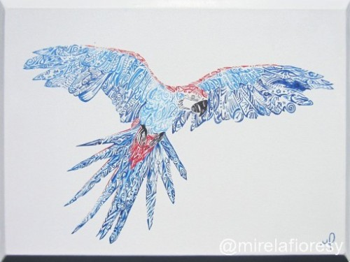 Macaw | Mirela Fioresy